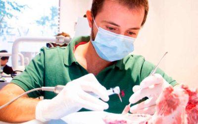 Máster en Implantologia Oral